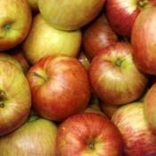Apple Granola Crisp