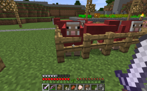 I did not want red sheep...