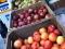 Reasons to Shop at Farmers Markets
