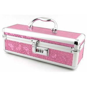 toy case with combination lock