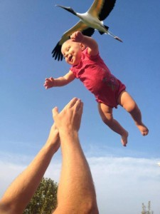 Stork-Baby-Delivery
